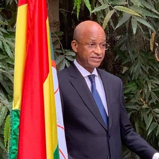Vœux de nouvel an 2019: le message du président de l'UFDG, Cellou Dalein Diallo