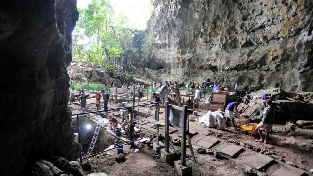 Une nouvelle espèce humaine découverte aux Philippines, selon une étude