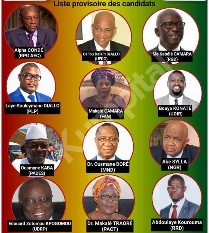 Sékhoutouréyah 2020: qui sont ces candidats qui roulent pour Alpha Condé ?