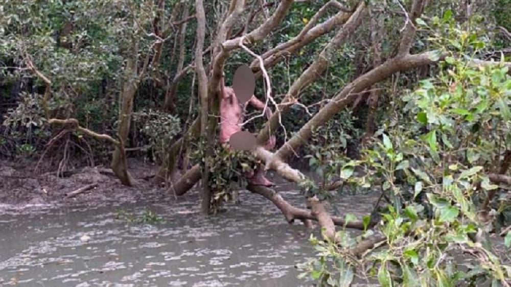 Australie: un fugitif retrouvé nu au milieu de crocodiles