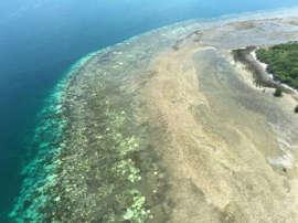 Seuls au milieu du Pacifique, ils survivent 29 jours grâce à de l'eau de pluie et des noix de coco