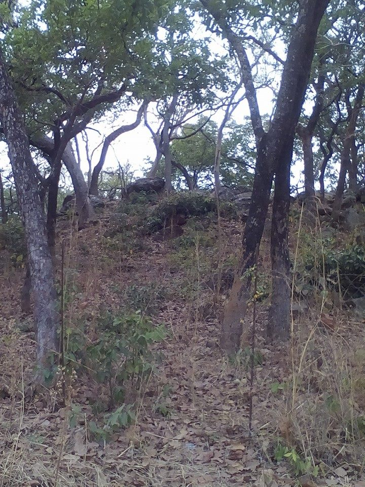 C'est sur cette colline que Elhadj Omar Tall a tenu son dernier conseil de guerre