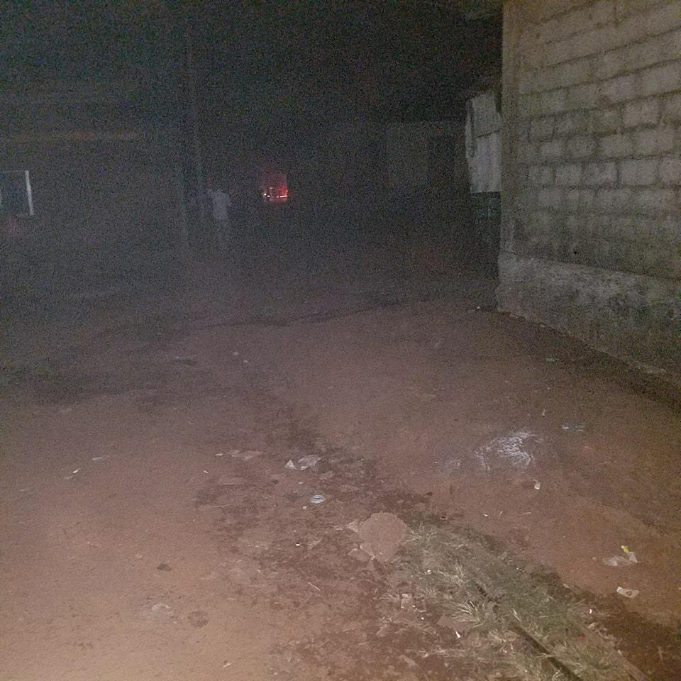 Coupure d'électricité à Conakry: les causes selon Papa Koly Kourouma