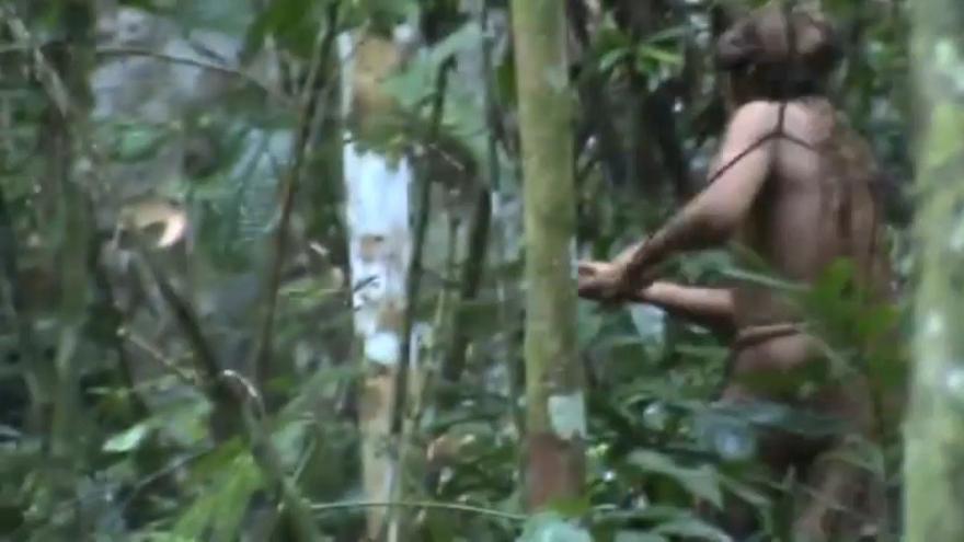 Brésil: il vit isolé depuis 22 ans en Amazonie